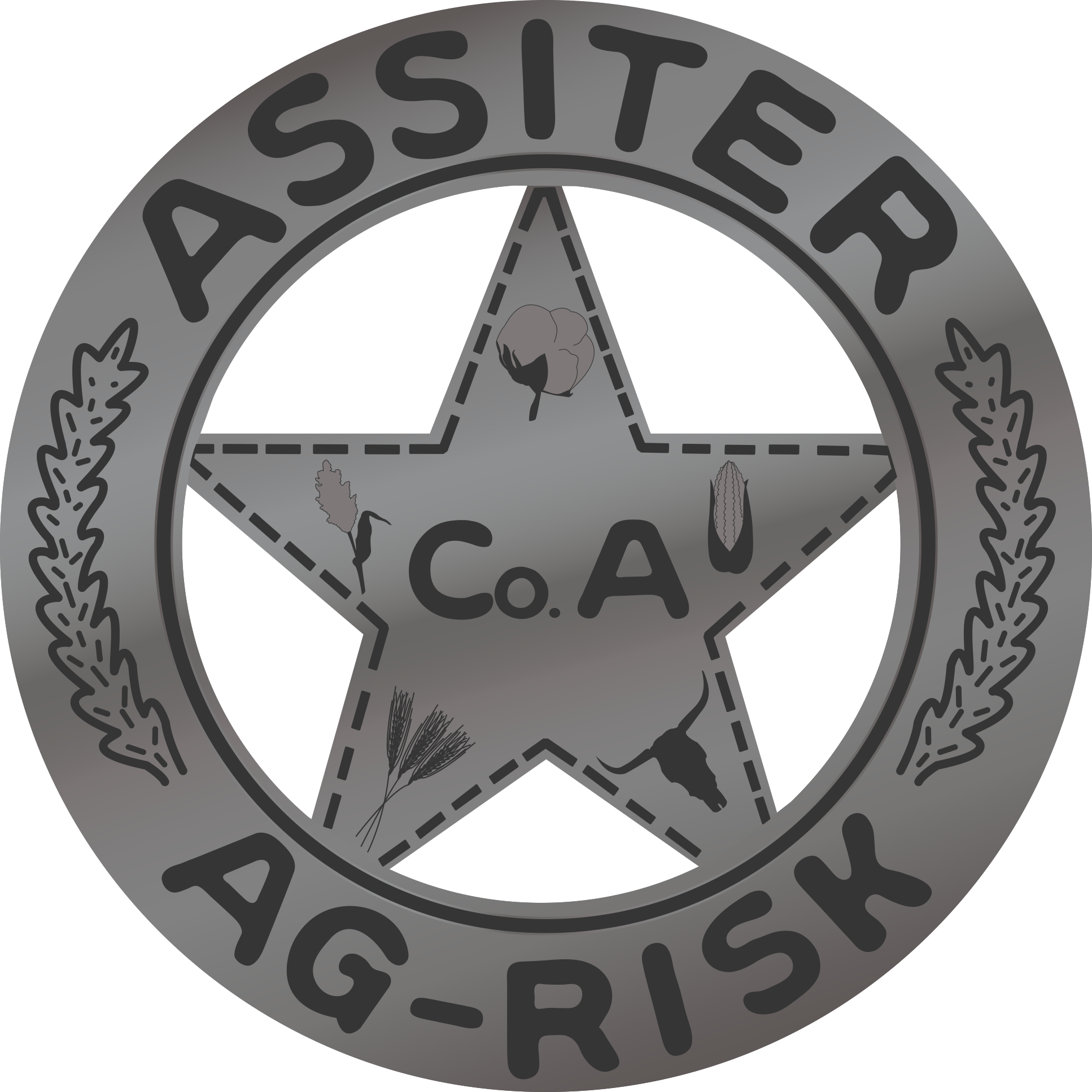 Assiter AG Risk